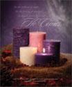 Premium Advent Bulletin: He Comes