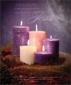 Premium Advent Bulletin: Jesus Our Hope is Born