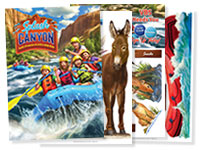 """Splash Canyon Decorating Posters (43"""" x 60"""") Set of 4 - VBS 2018"""