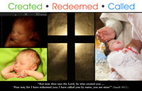 Created Redeemed Called - 2016 Life Sunday Bulletin Insert