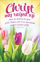 Standard Easter Bulletin: Christ was Raised Up