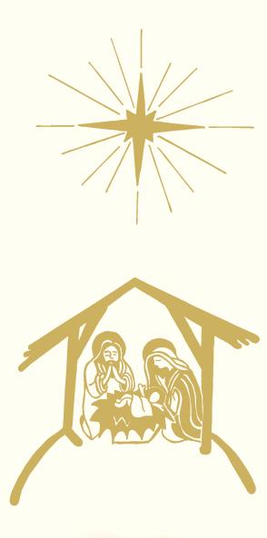 Image result for nativity banner