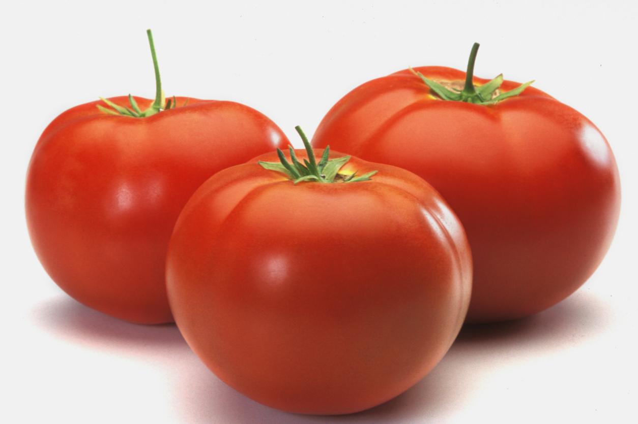 Sorteio: 3 Tomates! :)