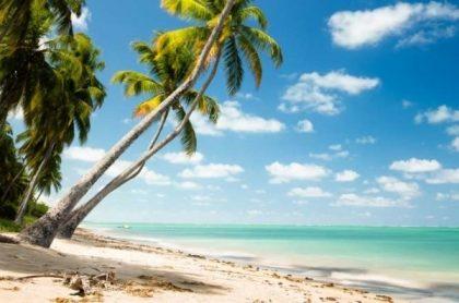 Pacote Maceió e Praias de Alagoas a partir de R$ 1.189 + Cupom de 8% OFF
