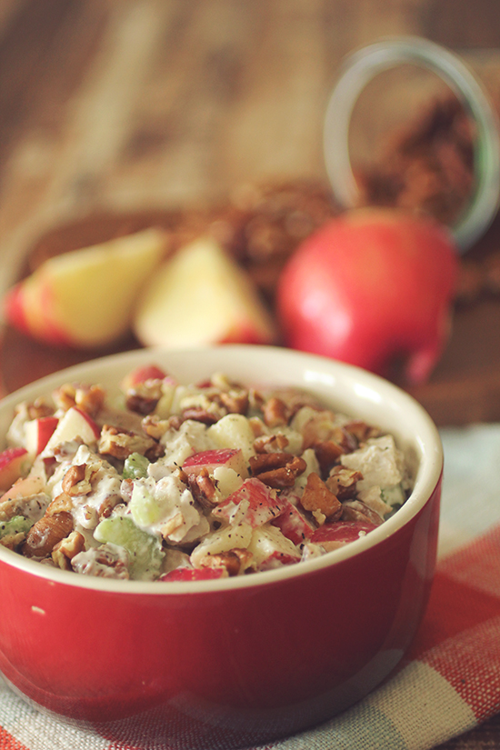 apple-pecan-turkey-salad-main