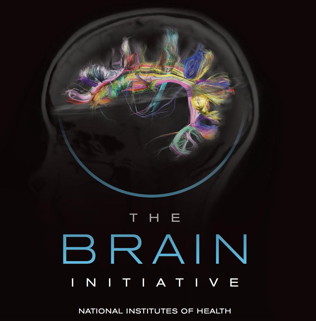 The BRAIN Initiative