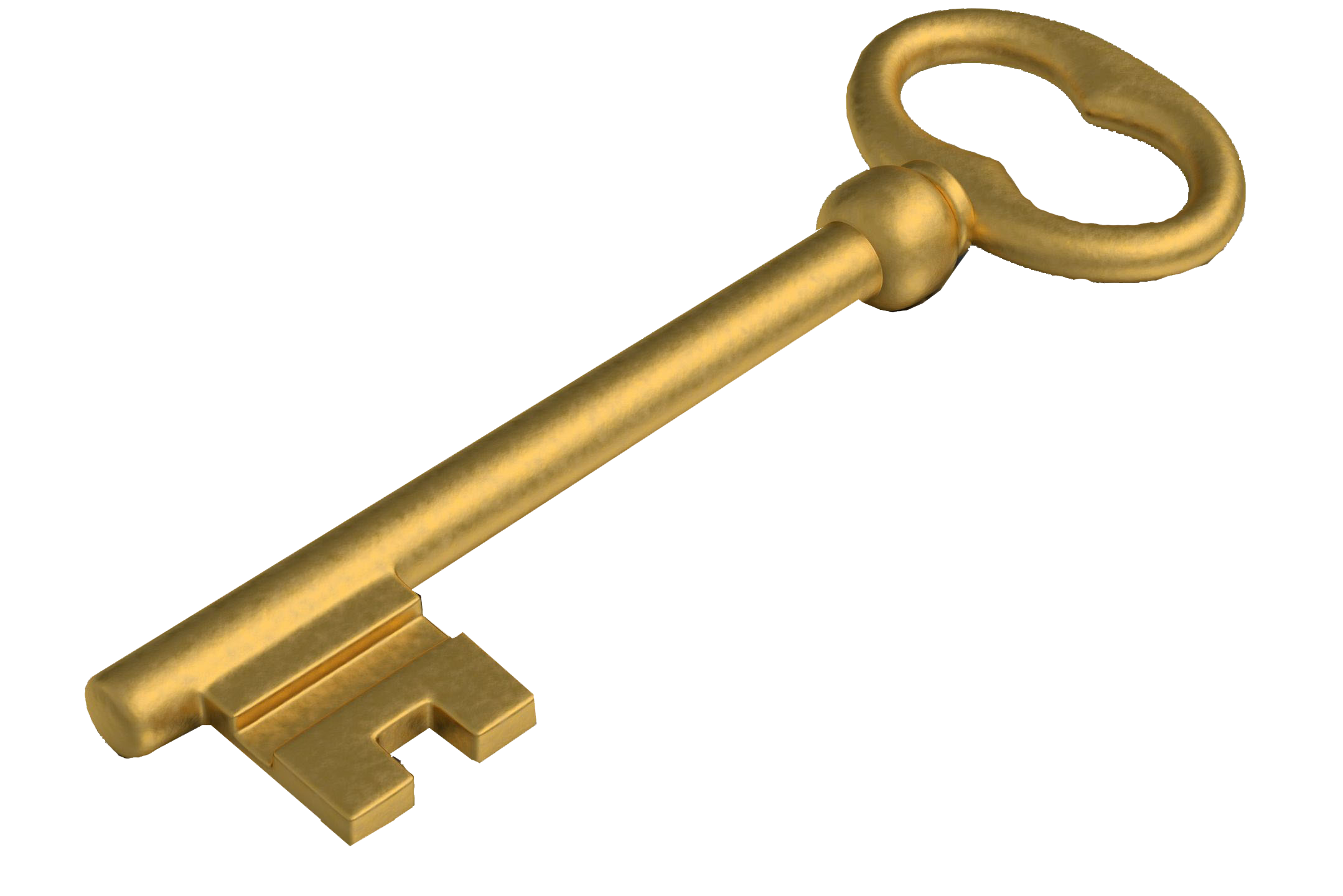 Golden Key - LIBERTY (SECURITY PRIVACY SAFETY) FREE WILL - UNIVERSAL SPENDING AUTHORITY - PRIVATE PROPERTY - FREE LAND - THERE IS NO GOVERNMENT - A GUARANTEED LIFETIME INCOME - NOW YOU OWN YOUR HOME AND LAND - NOW YOU HAVE AN INCOME - YOU WILL ALWAYS OWN YOUR HOME AND LAND - YOU ARE SAFE AND SECURE