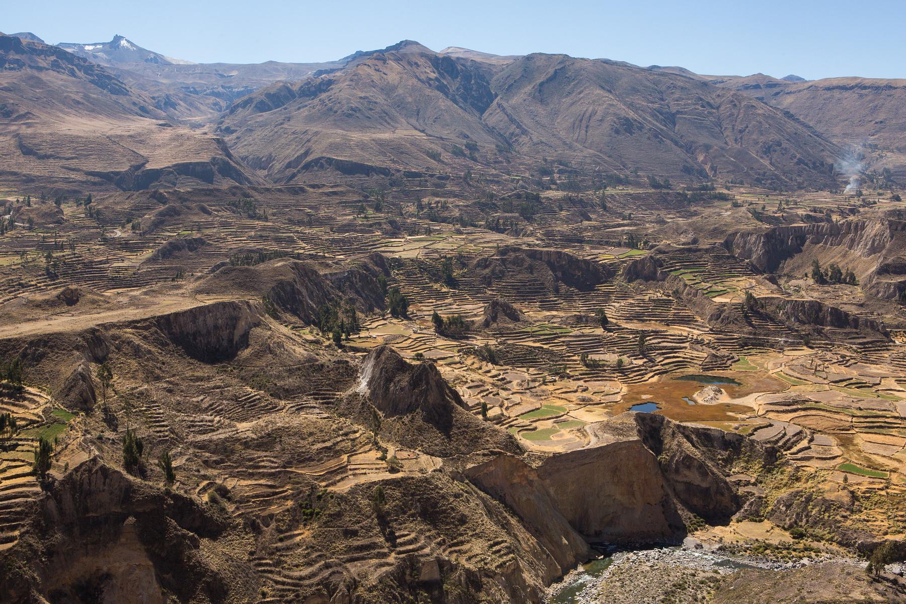 Colca Valley // Peru