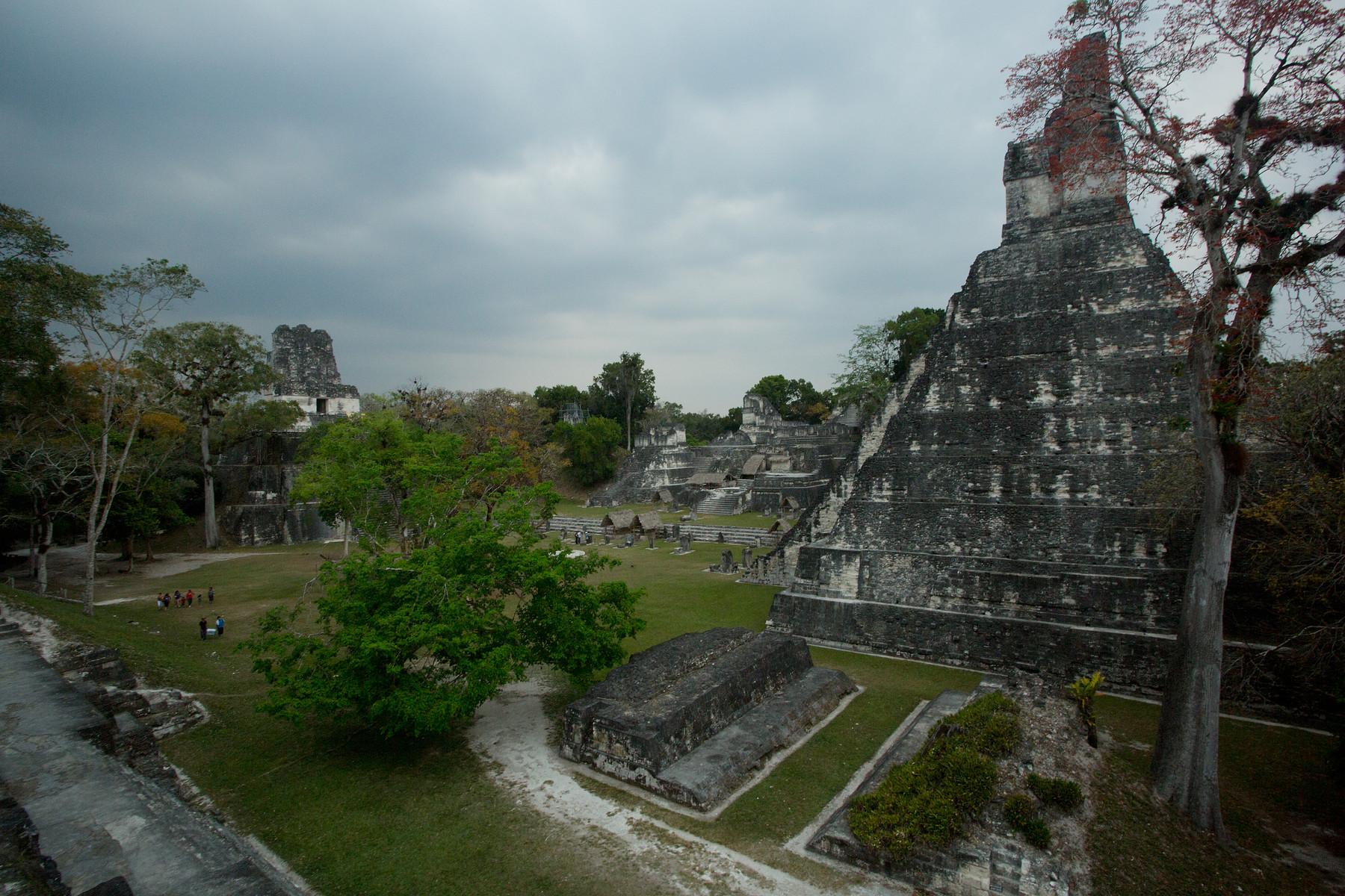 Tikal // Guatemala
