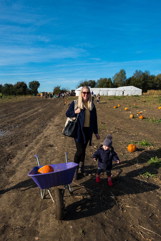 Pumpkin Picking 2019