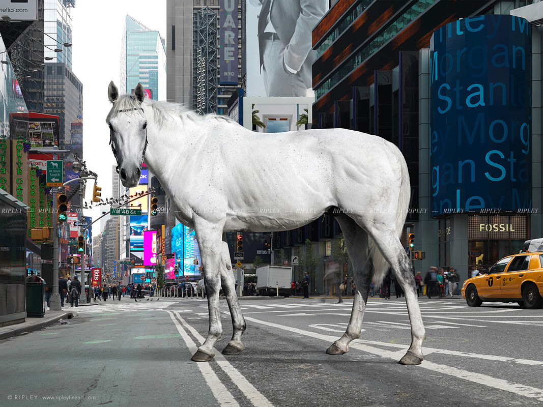 Racehorse in Times Square, New York