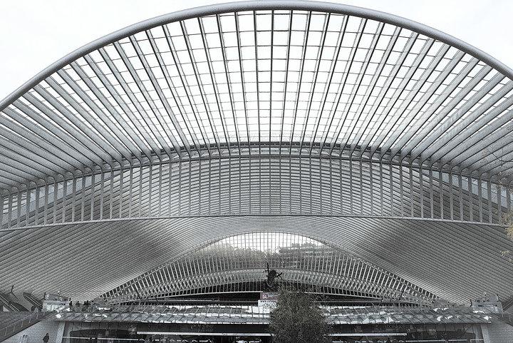 Gare Des Guillemins 2