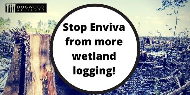 stop enviva from more wetland logging