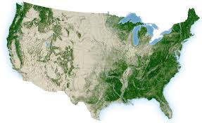 U.S. Forests
