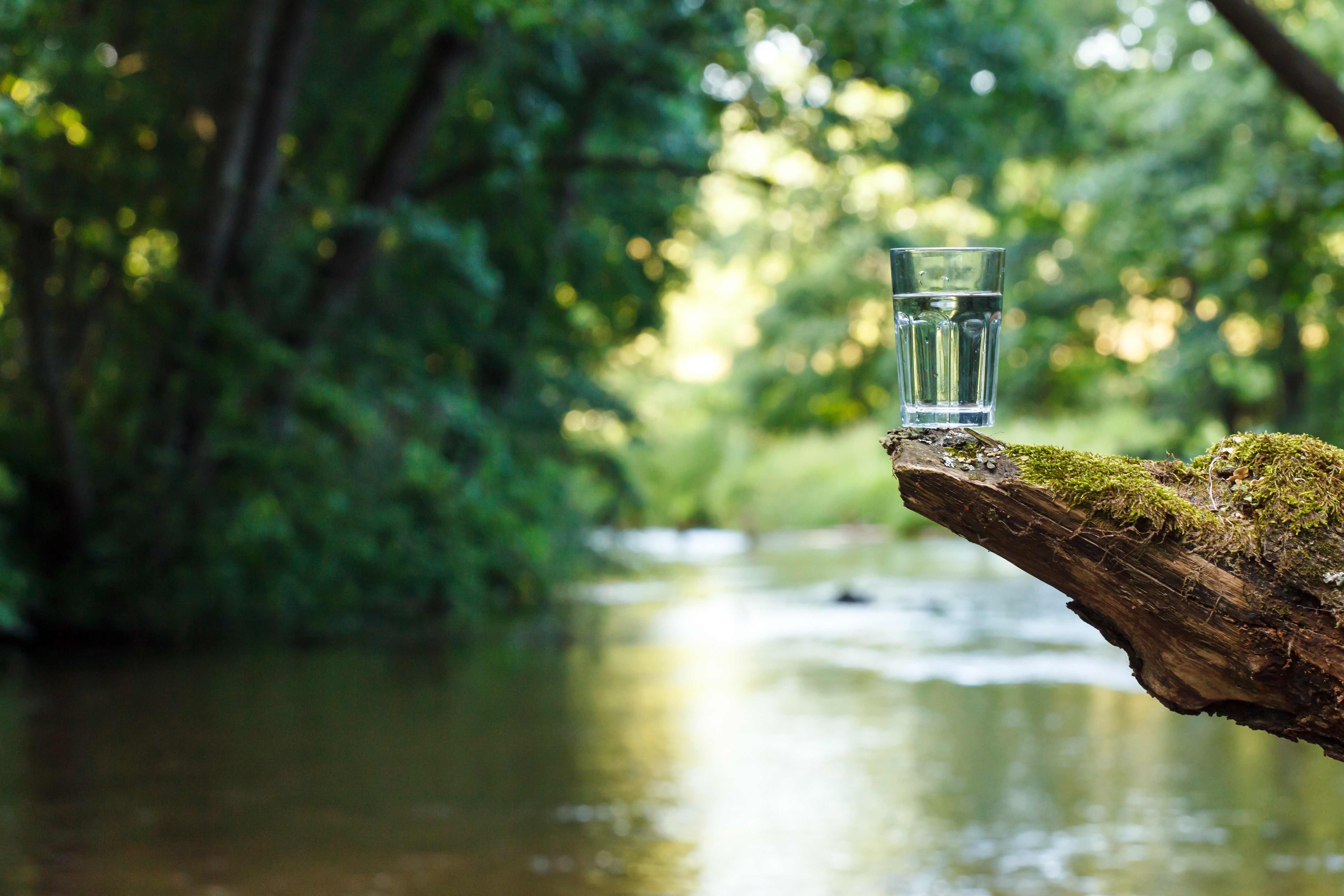 world wetlands day glass of water above a river