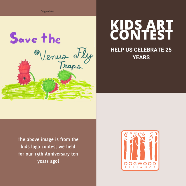 Art contest for ages 8-11