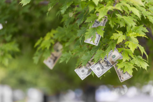 ecosystem services - money growing on a tree