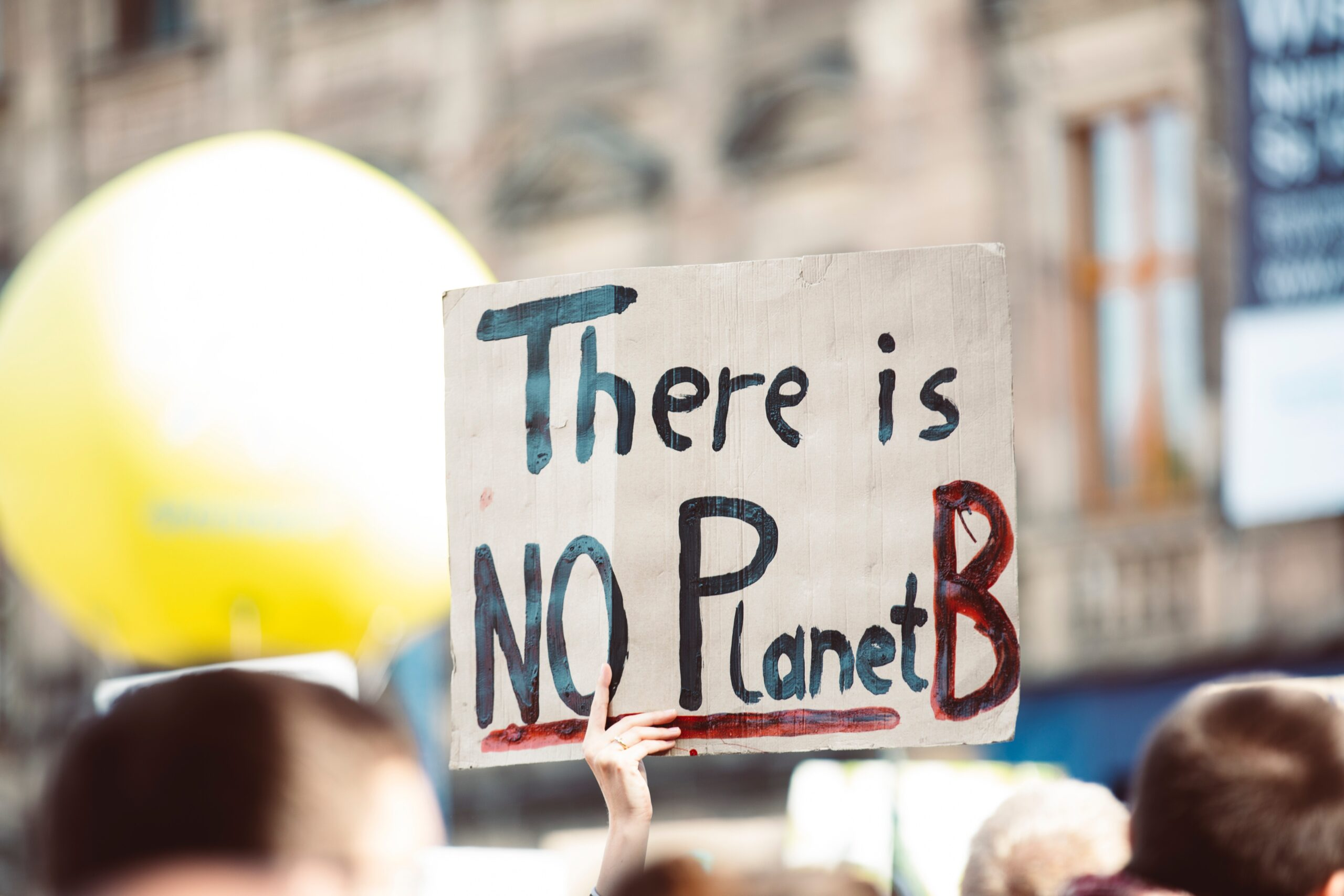 there is no planet b protest sign - ecosystem services