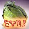 CabbageisEVIL