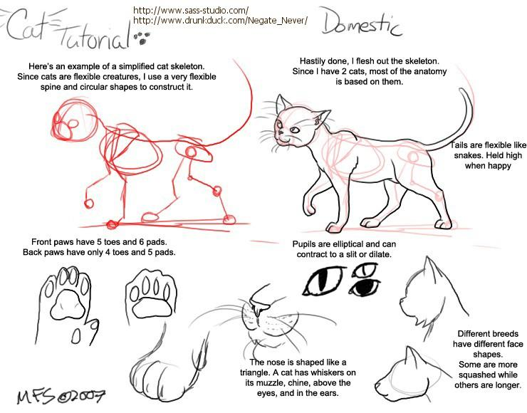 Comic Tutorials On The Duck Drawing A Cat By Modesty 1