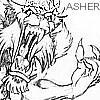 Viseral_Asher