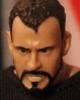 WWE The Comic