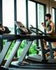 Importance of treadmill