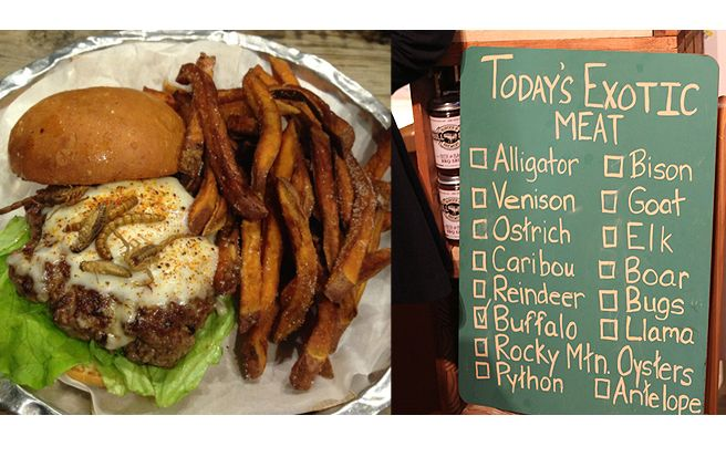 Local restaurant Bull City Burger and Brewery has offered a variety of more than 15 exotic meat burgers throughout the month of March, including bugs (left), python, ostrich and alligator.