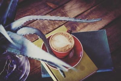 Wonderland Coffee