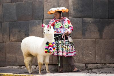 Mi alpaca y yo