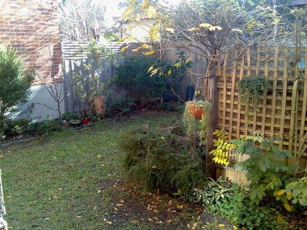 Beaumaris Garden - Before