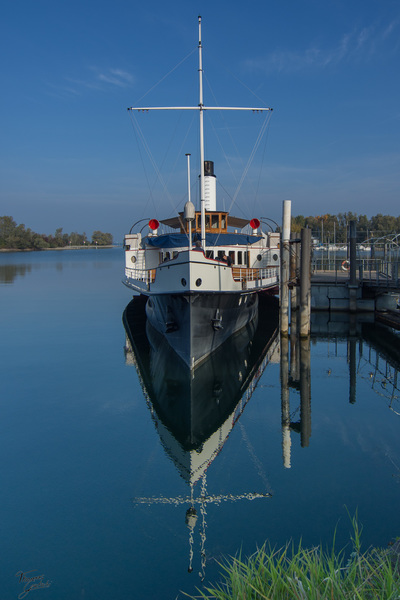 Dampschiff Hohentwil