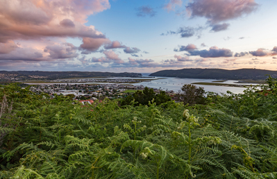 Place Of The Ferns - Knysna