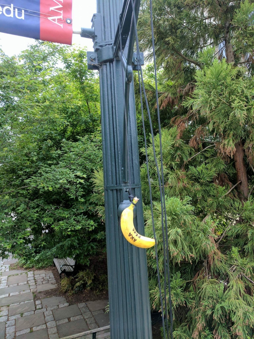 Public Safety investigating racist incident involving bananas