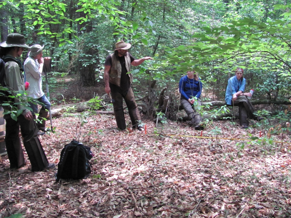 Researchers recover narratives lost in the 'Great Dismal Swamp'