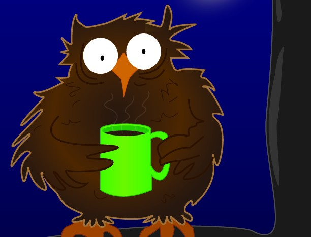 Image result for night owl