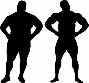 fat not fat illustration - freedigital