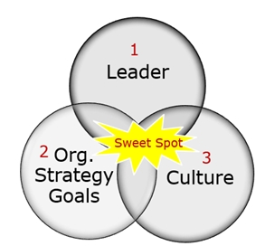 sweet spot of success