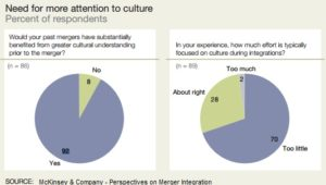 Merger and culture survey chart