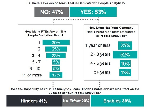 Analytics team analysis