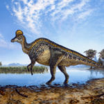 Do You Work At a Dinosaur Recruiting Function? A Quick Assessment Checklist
