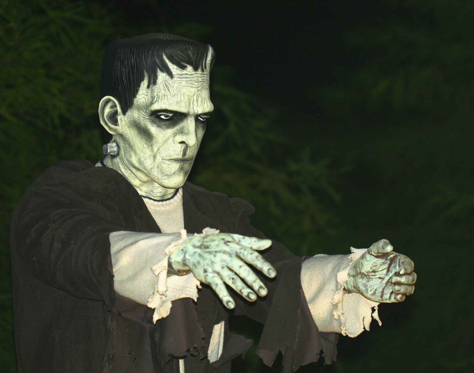 "the limitations of being human as shown in frankenstein by mary shelley 63 thoughts on "" discussion 2 (period six) – wa: evidence 1  in mary shelley's frankenstein, the being  shelley explains, ""a human being in."