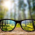 How to Overcome Leadership Blindness: The Challenge of Seeing Differently