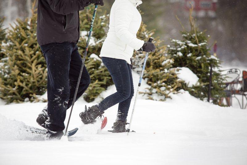 019_-_snowshoeing.jpg