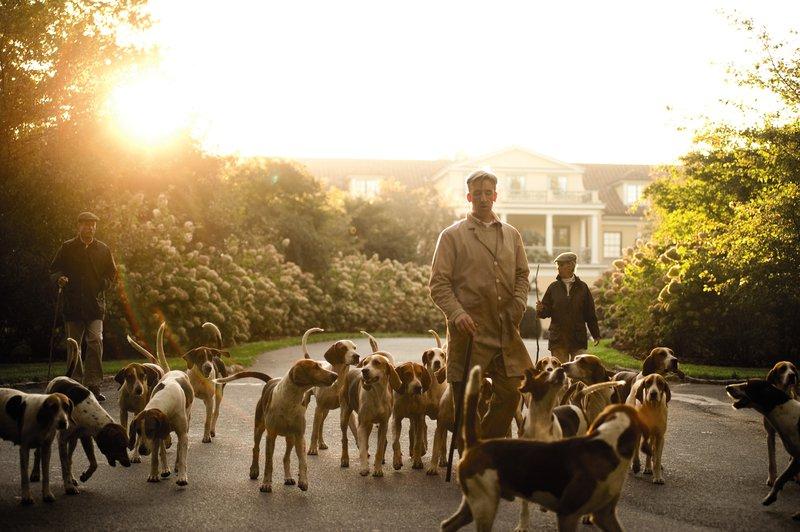 hounds_2.jpg