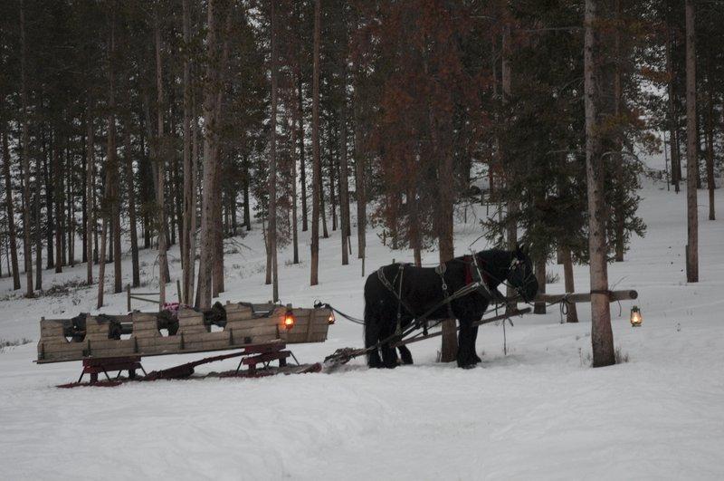 sleigh_ride.jpg