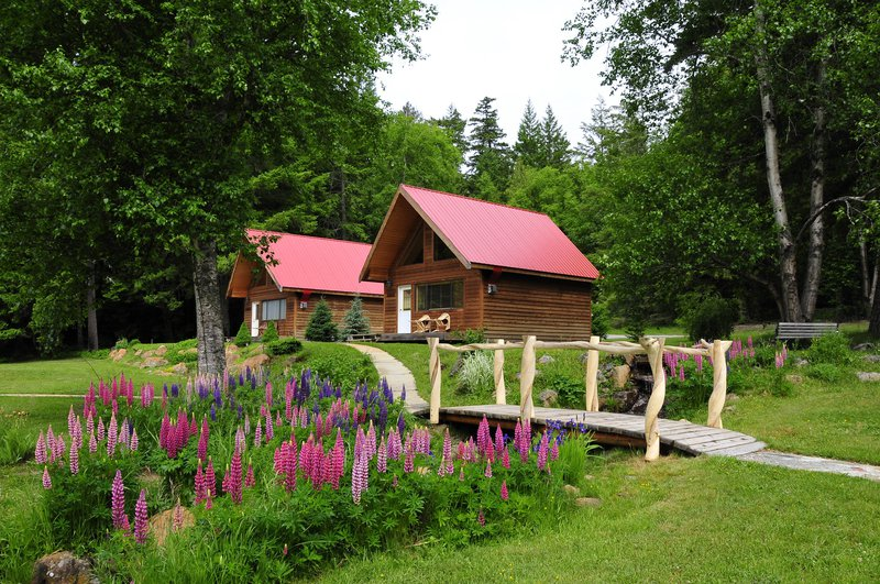 2_chalets_and_flowers_photo_mike_wigle.jpg