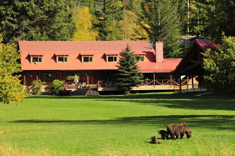 tweedsmuir_park_lodge_with_grizzly_bears_photo_mike_wigle.jpg