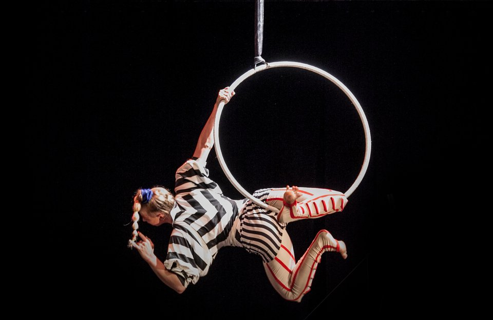 Private Circus & Workshop Experience