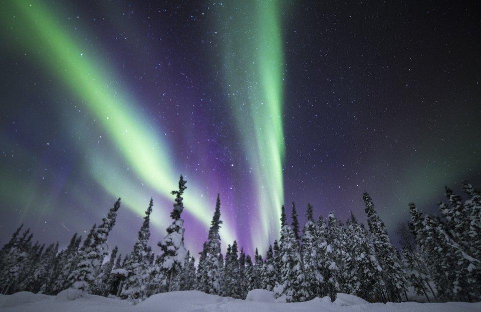 Winter Auroras in the Northwest Territories